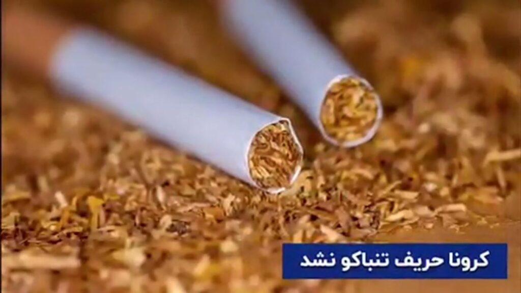 کرونا حریف تنباکو نشد